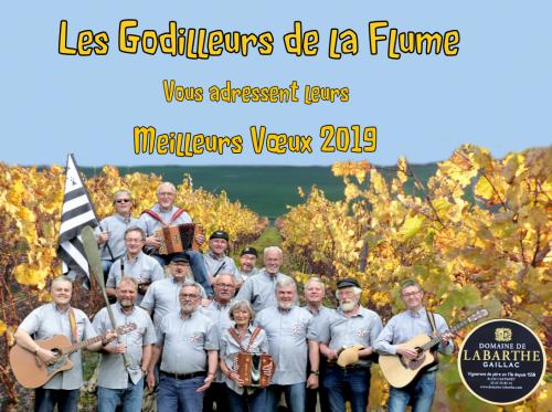 Carte de Vœux 2019 les Godilleurs de la Flume  bis.PNG